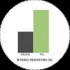 Raport przepustowości filtra DPF/FAP